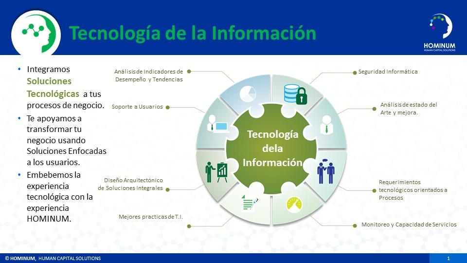HOMINUM Information Technology